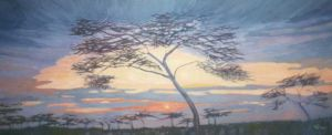 No. 26 - Acacia Trees At Sunset